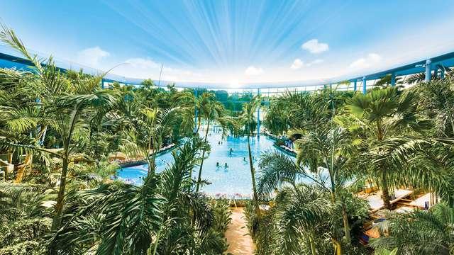 Mi paraíso de vacaciones bajo las palmeras