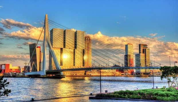 Ontdek alle insights van Rotterdam inclusief een lokaal hapje en drankje