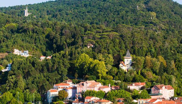 Visita a Termas en el punto intermedio entre Aveiro y Coimbra
