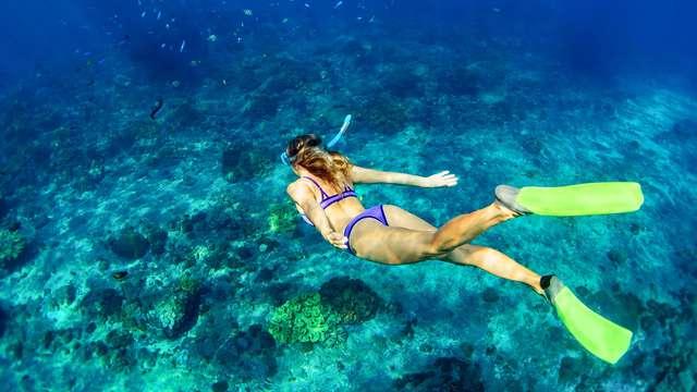 Hotel Diving Les Illes