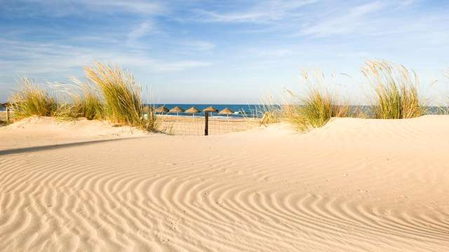 Disfruta de una escapada enologica a la orilla del mar en la costa Blanca, con cata de vino
