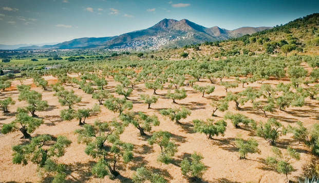 Escapada con cata de vinos y aceites en Castelló d'Empuries