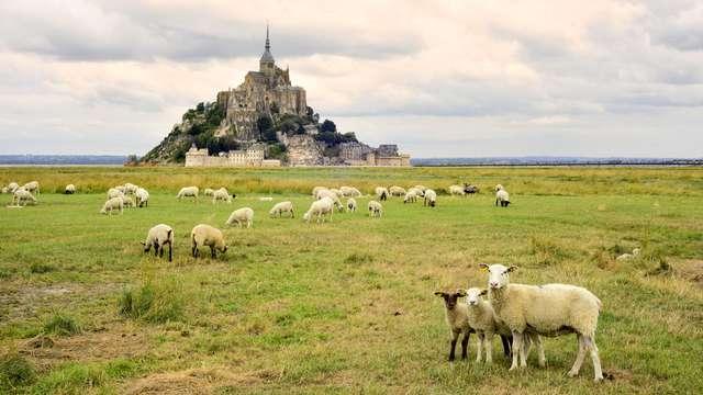 Charme dans un hôtel historique du Mont Saint-Michel