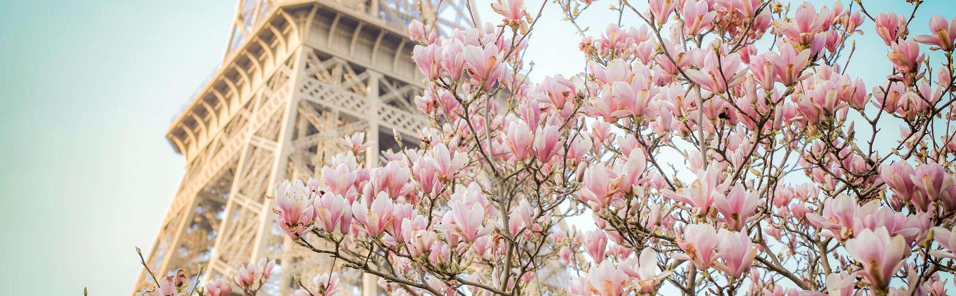 Hôtel Plaza Elysées - EDIT_NEW_PARIS_147__1_.jpg