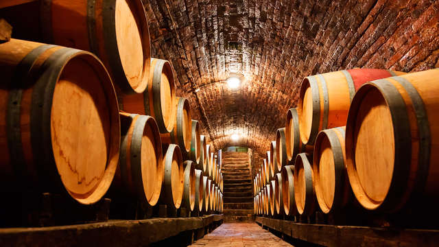 Escapada con curso, visita y cata de vinos en una famosa bodega de la región del Penedés