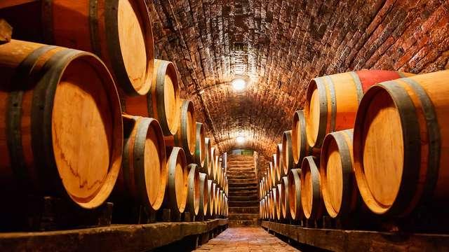 Descubre los sabores de la Toscana con degustación de vinos o de aceites