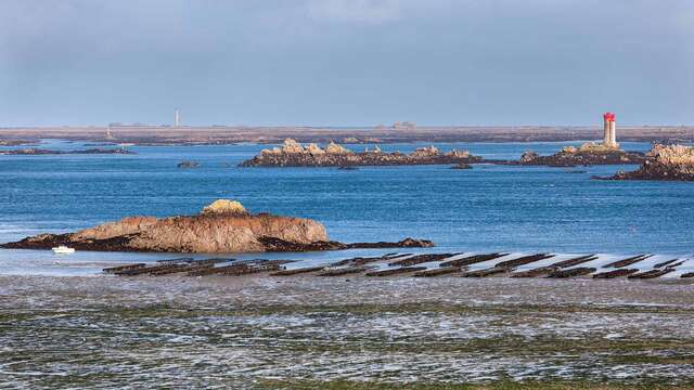 Brisa marina en la costa de Bretaña