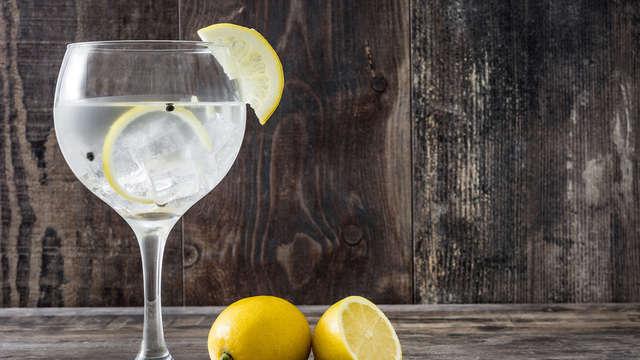 Descubre los secretos de la ginebra a las puertas de Florencia (a partir de 2 noches)