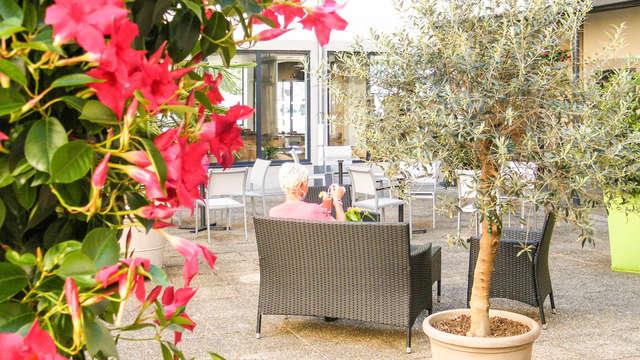 Hotel Ibis Lyon Sud Vienne Saint-Louis
