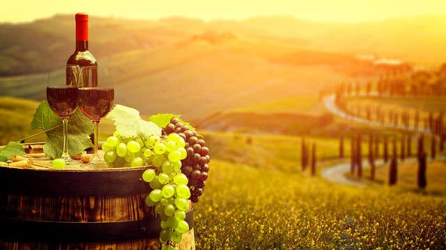 Degustación de vino en el campo de Pisa (desde 2 noches)