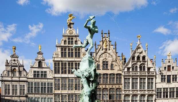 Citytrip naar de bruisende stad Antwerpen
