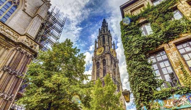Bezoek de Grote Markt van Antwerpen tijdens deze citytrip