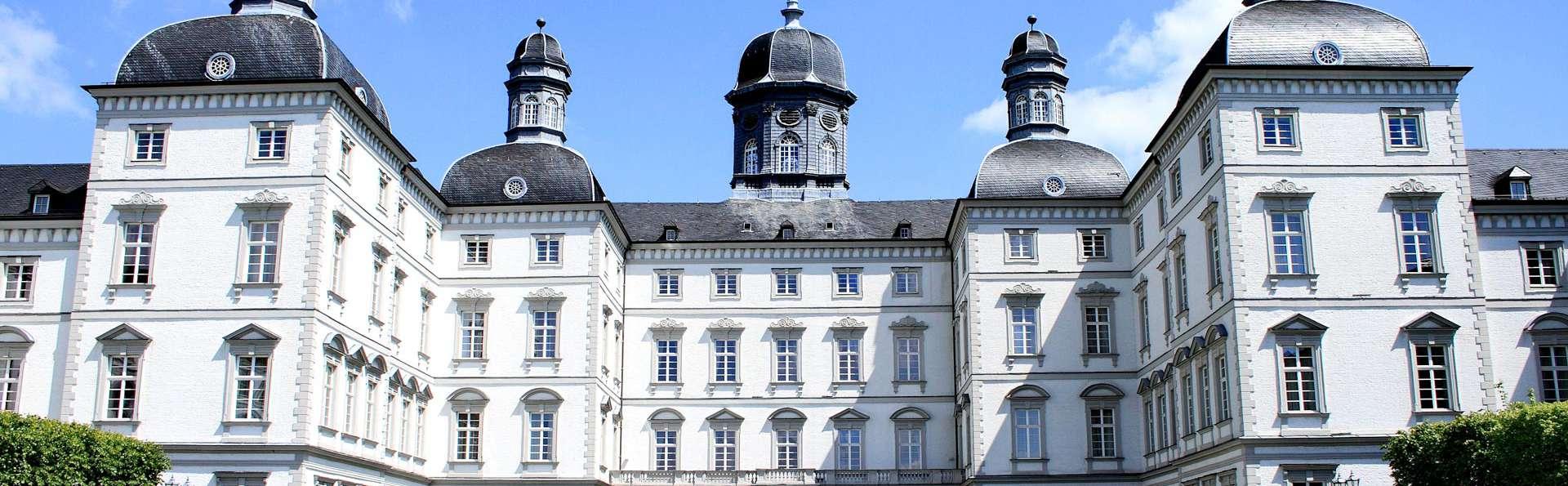 Séjour de luxe avec dîner et spa dans un château près de Cologne (à partir de 2 nuits)