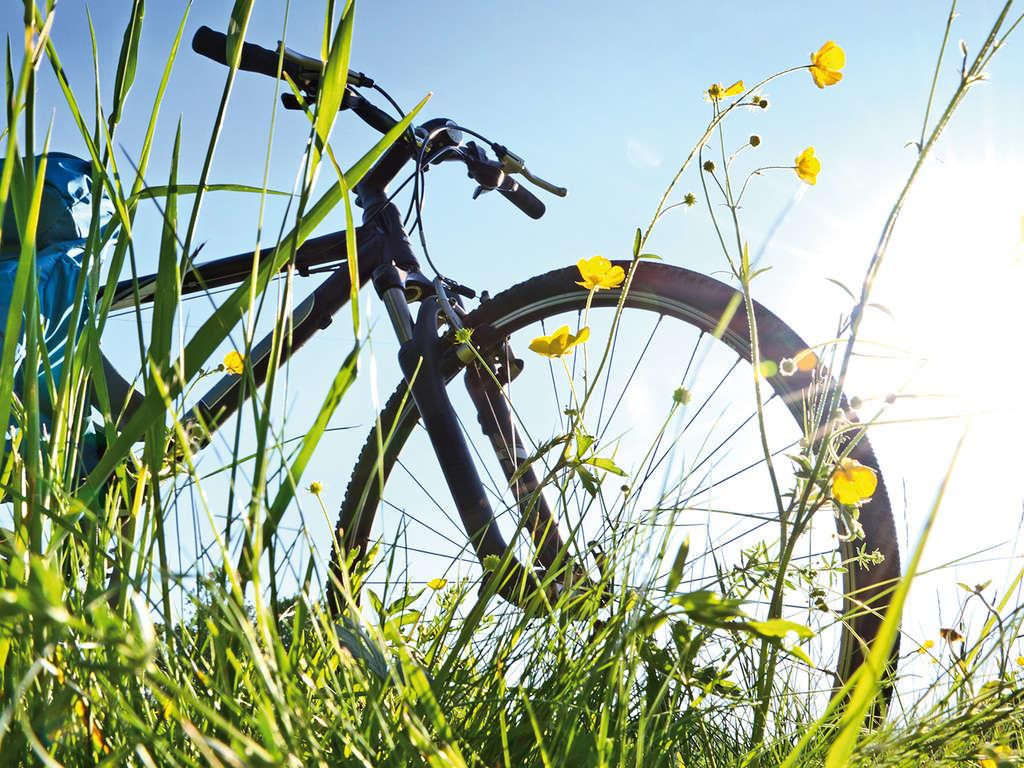 Séjour Belgique - Explorez les environs de Lanaken à vélo  - 4*