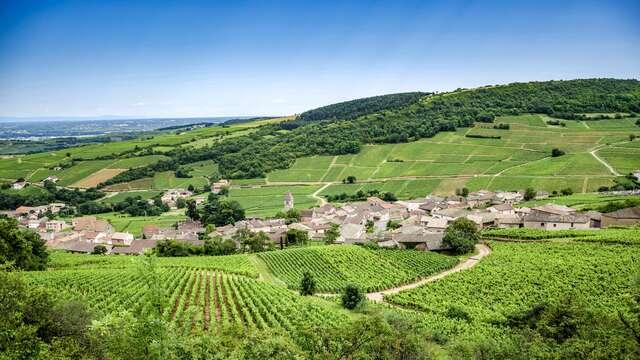 Séjour détente au cœur d'un village typique de Bourgogne
