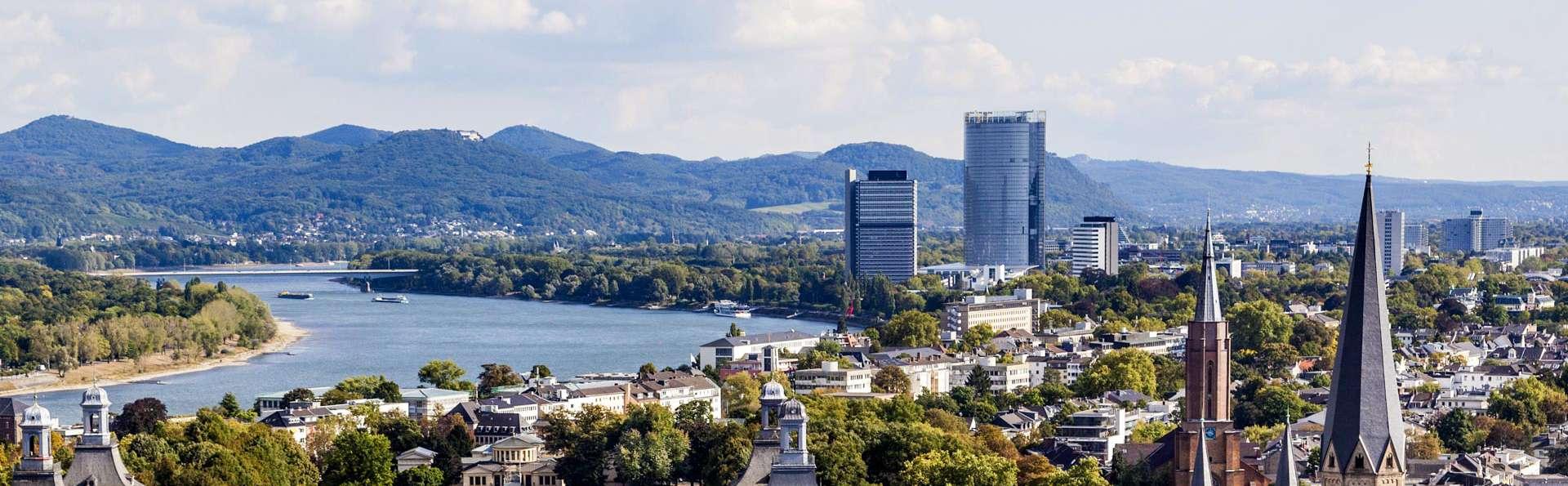 Pasea por las históricas calles de Bonn