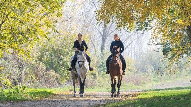 Soggiorno nella natura in Sicilia con gita a cavallo