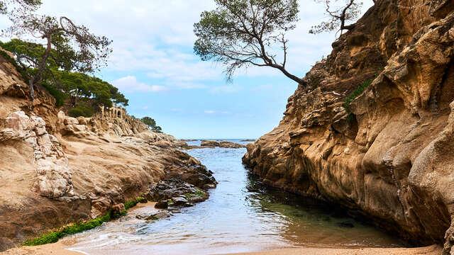 Mirando al Mar: Descubre los encantos de la Costa Brava con espectaculares vistas