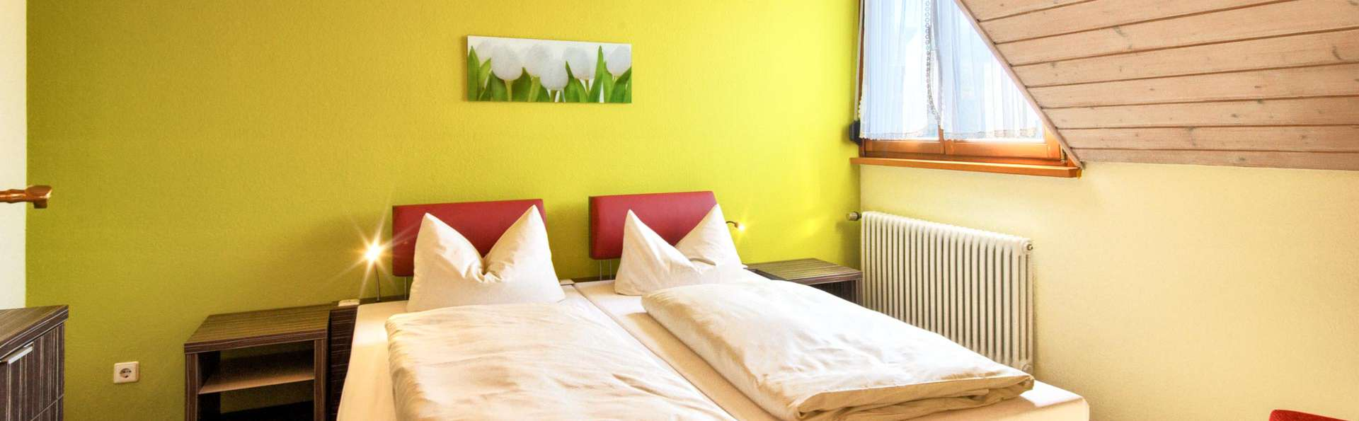 Ringhotel Aparthotel Badblick  - EDIT_APARTMENT_02.jpg