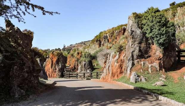 Escapada con entradas a Cabárceno, acceso al Jacuzzi, cava y bombones entre los Valles Pasiegos
