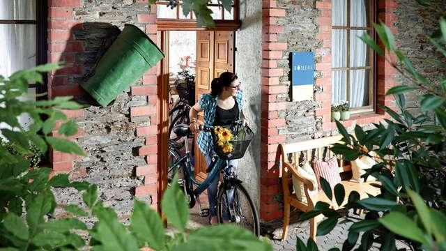 Ontdek de natuur aan de Moezel op een e-bike (vanaf 2 nachten)