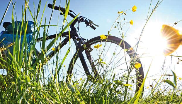 Vertrek op fietsweekend en geniet 's avonds van een heerlijk diner