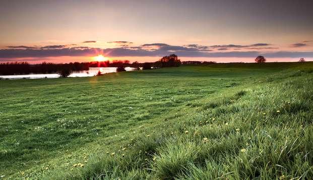 Confort au cœur d'Arnhem