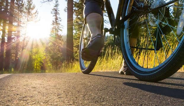 Comfort en sportieve ontspanning op de Veluwe