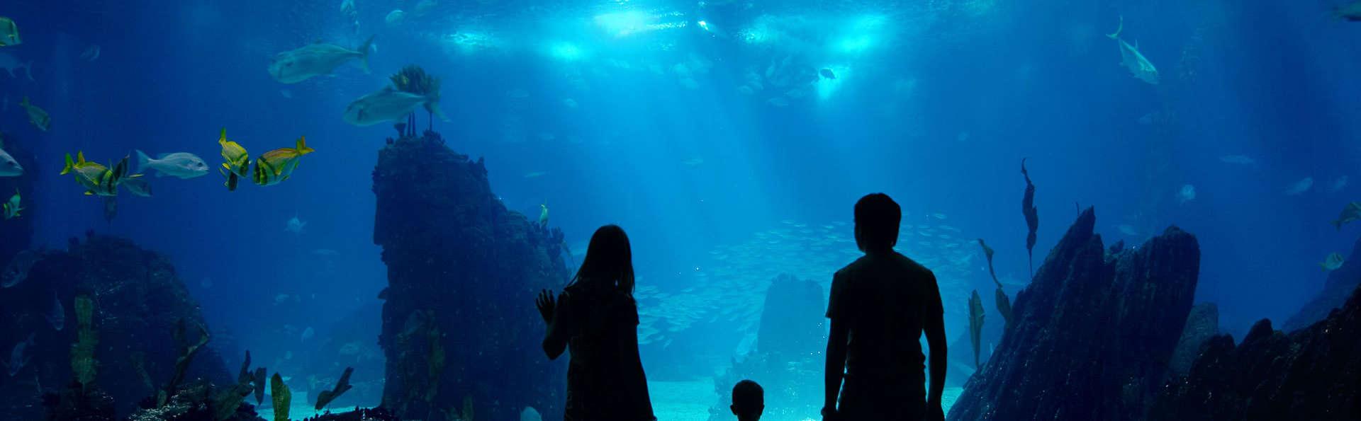 Découvre le monde merveilleux des dauphins, des otaries et des phoques (à partir de 2 nuits)