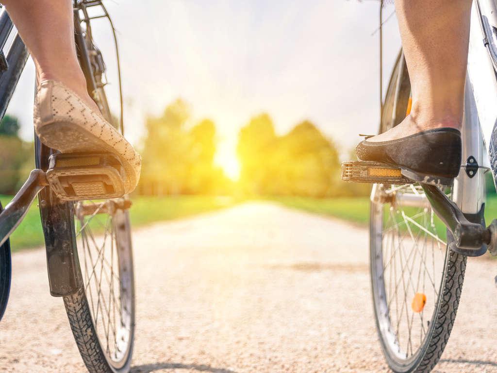 Séjour Pays-Bas - Promenade en vélo sur la côte de Zélande  - 3*
