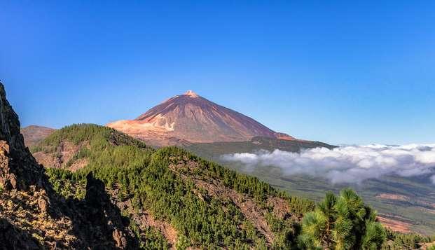 Escápate en Media Pensión a Tenerife, a los pies del Teide