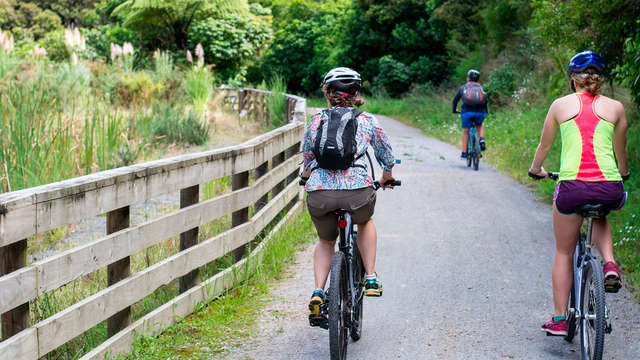 Naturaleza en estado puro: Paseo en e-bike y senderismo con geocaching  (desde 2 noches)