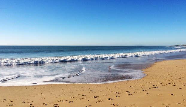 Soleil, mer et plage et luxe sur la côte hollandaise
