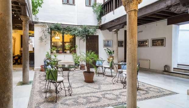 Descubre la maravillosa ciudad de Granada a través del tour guiado