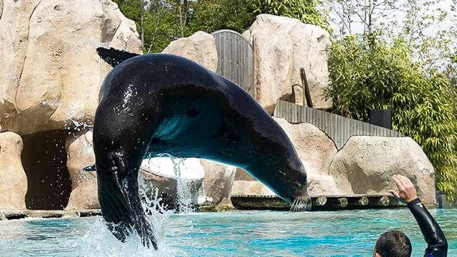 Week-end découverte au Zoo d'Amnéville
