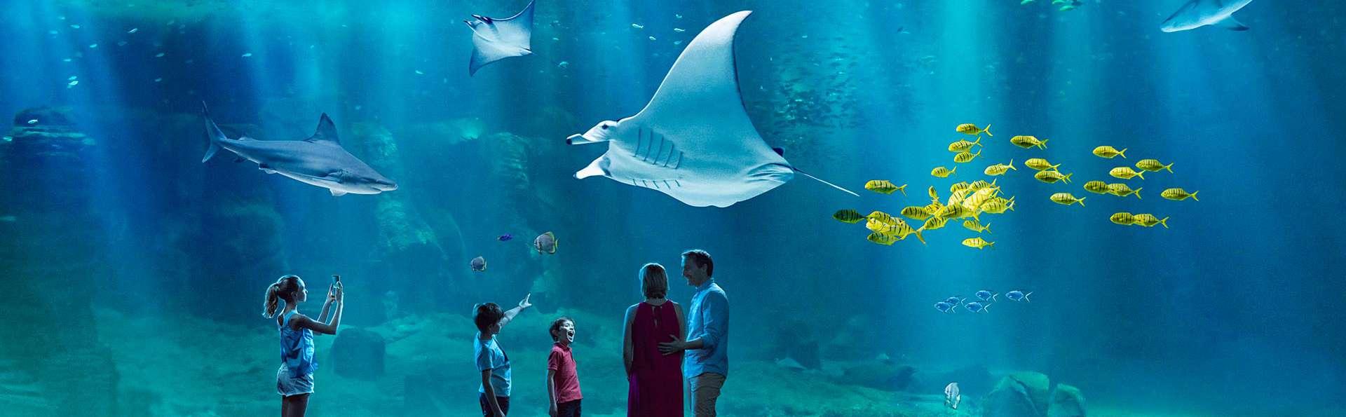 Séjour familial avec entrée à l'Aquarium Nausicaa