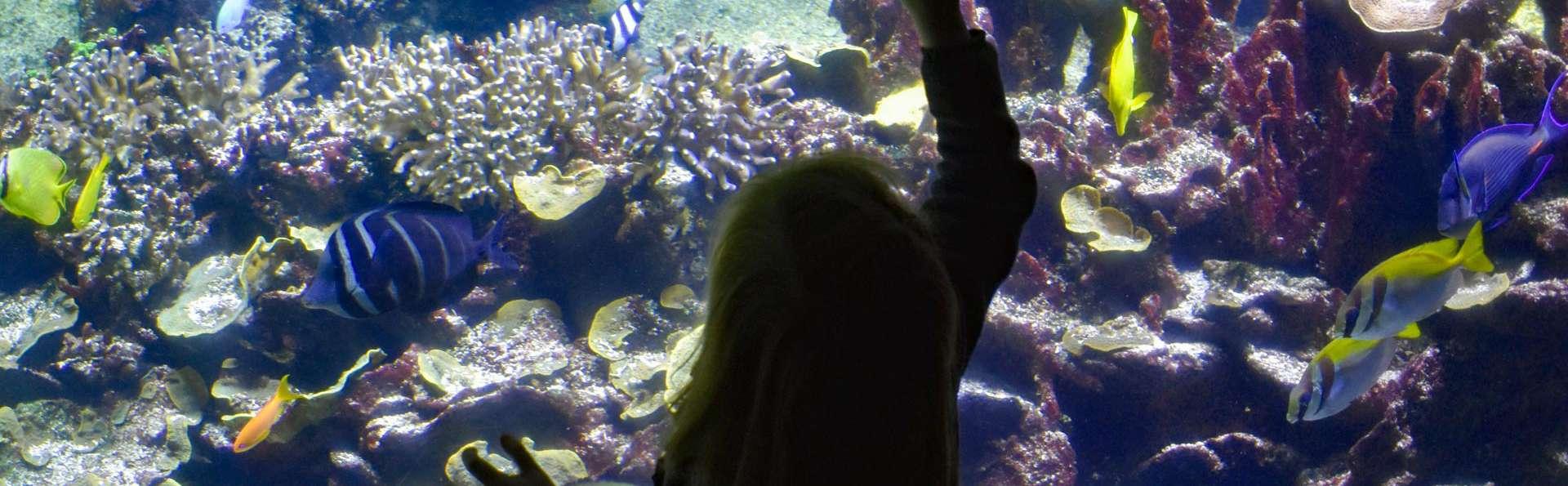 Week-end découverte avec entrée à l'Aquarium Nausicaa