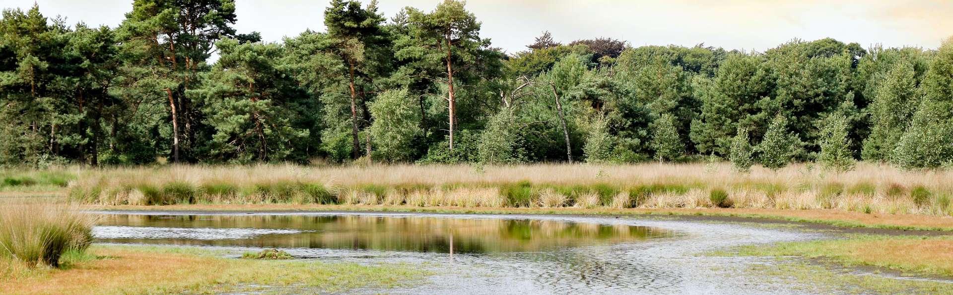 Ontdek de natuurrijke omgeving van Antwerpen (vanaf 2 nachten)