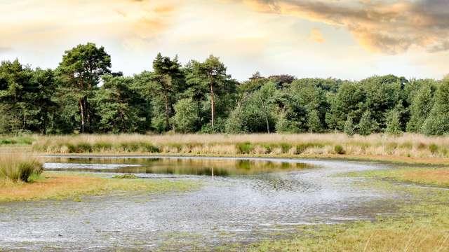 Découvrez la magnifique nature qui borde Anvers (à partir de 2 nuits)