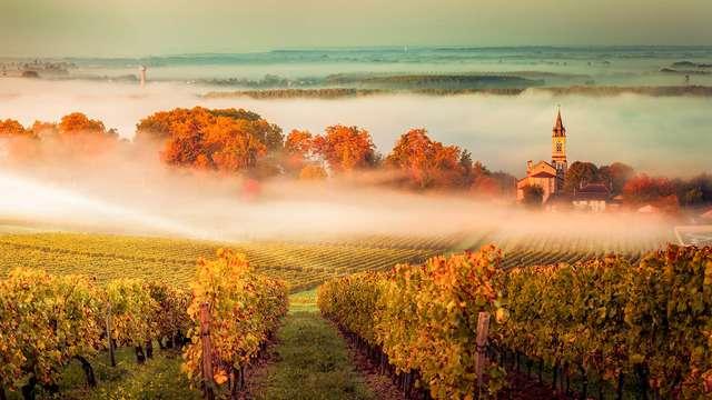 Ibis Styles Bordeaux Meriadeck