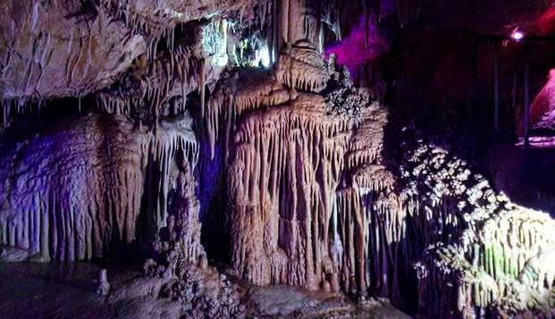 Découvrez les charmes de Palma de Mallorca avec une visite des Grottes de Génova