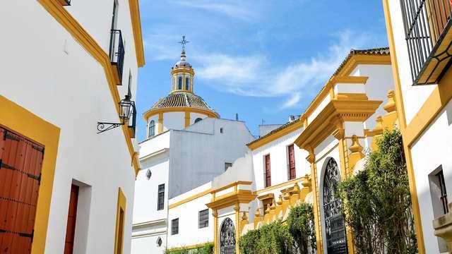 Descubre Sevilla alojándote en el casco histórico