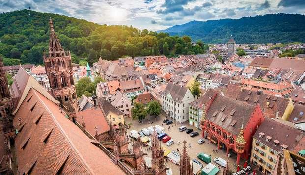 Alojamiento ideal cerca de Freiburg