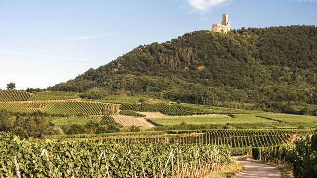 Venez savourer l'Alsace en un lieu d'exception