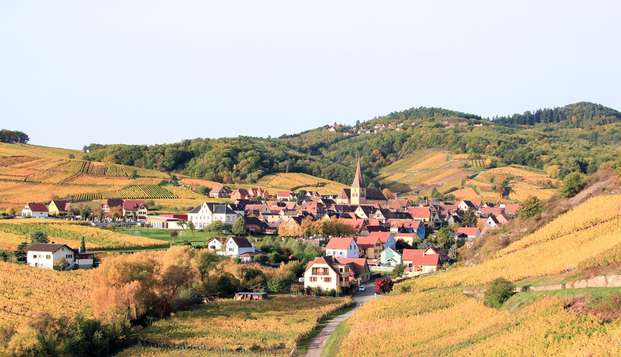 Venez goûter à la douce vie Alsacienne avec du bon vin