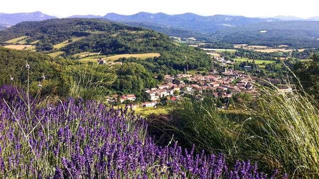Pause de charme près de Carcassonne