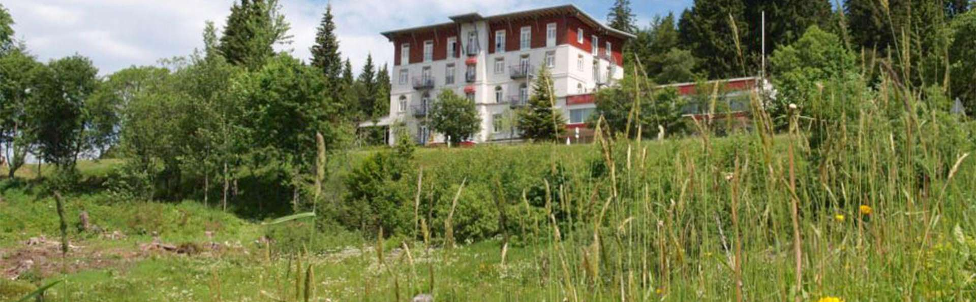 Waldhotel am Notschreipass - EDIT_SURROUNDING_10.jpg