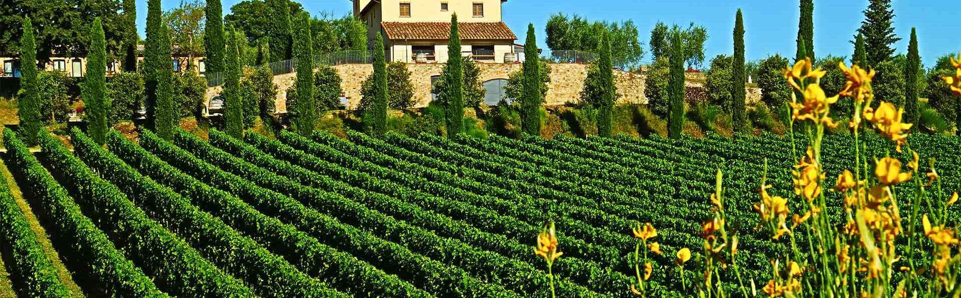 Le Buche Wine Resort & Spa - EDIT_TERRACE_05.jpg