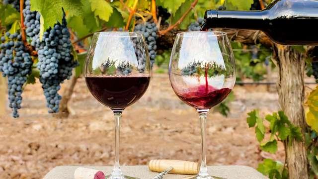 1 Botella de vino