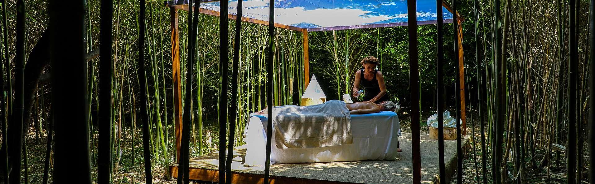 Séjour relaxant avec massage dans un château entre Arles et Avignon